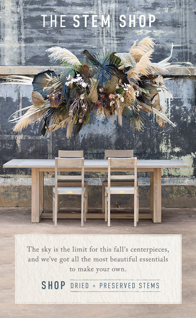 The Stem Shop | The sky is the limit for this fall's centerpieces, and we've got all the most beautiful essentials to make your own. Shop Dried and Preserved Stems.