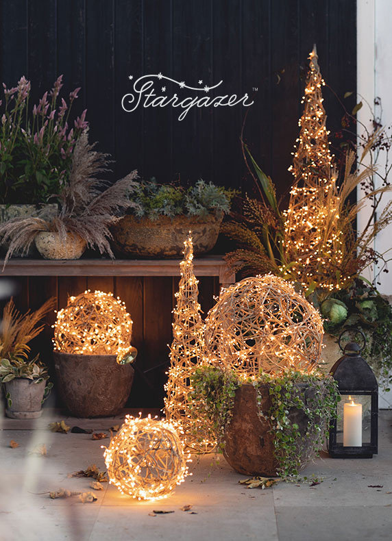 Stargazer Illuminated Vine Structures