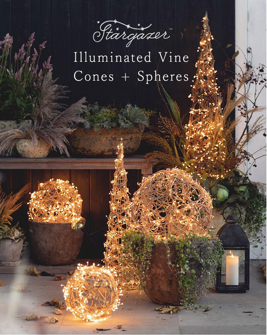 Stargazer Illuminated Vine Cones + Spheres