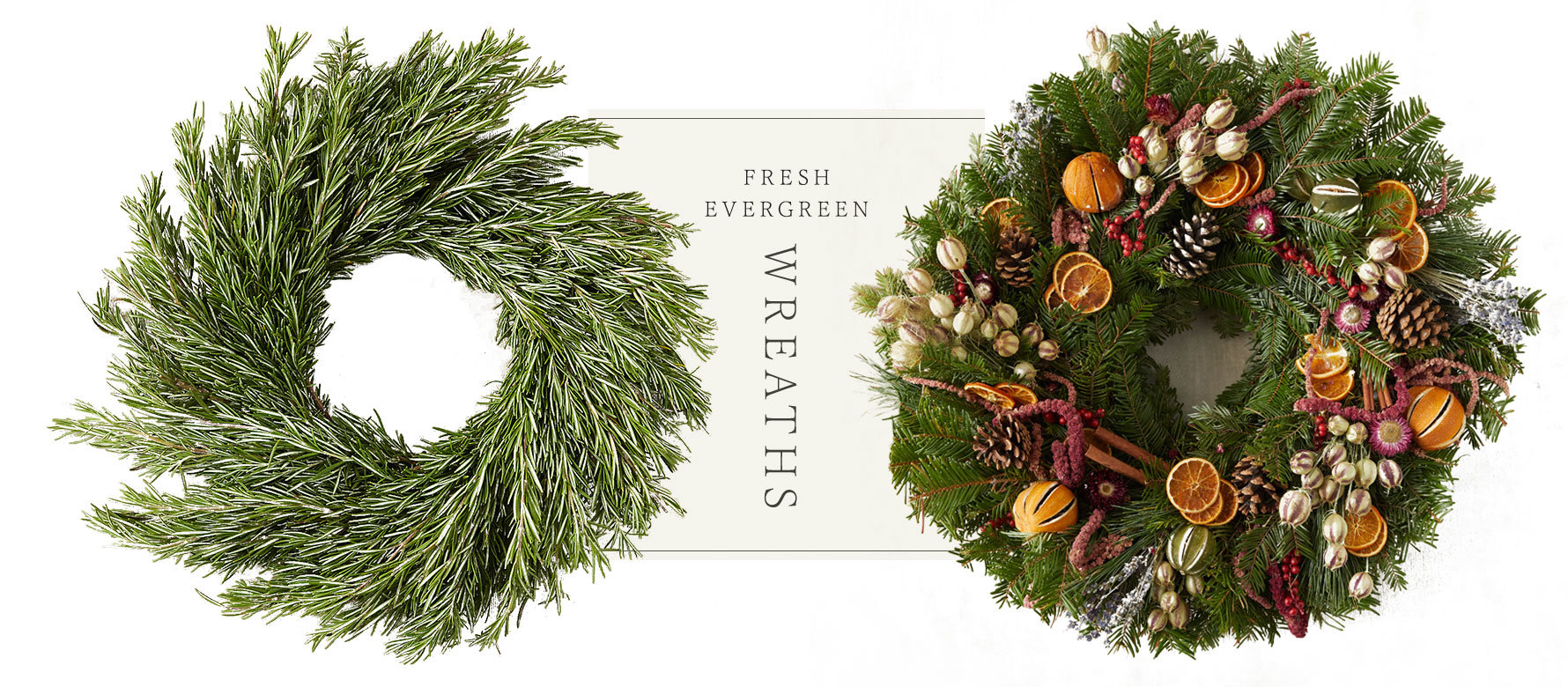 Fresh evergreen wreaths