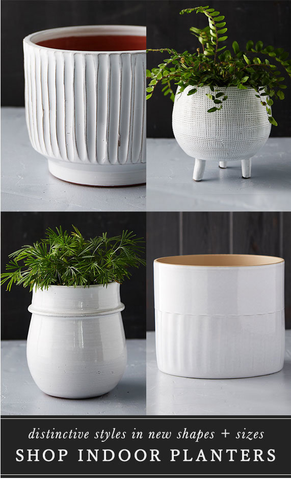 Distinctive Indoor Planters | in new shapes + sizes