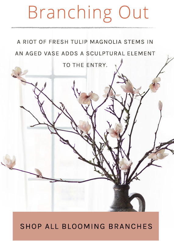Branching Out | A riot of fresh tulip magnolia stems in an aged vase adds a sculptural element to the entry. | Shop all branches + stems