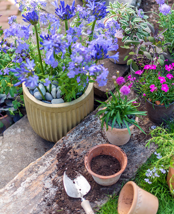 Outdoor Pots | dig into our new arrivals